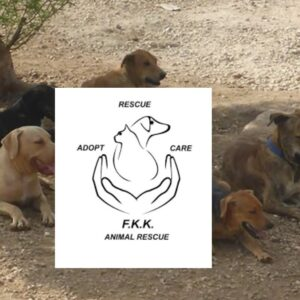 Steun FKK Animal Rescue met een donatie